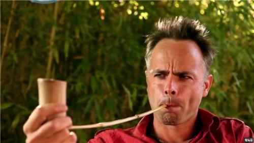 雷曼之父《超越善恶2》总监离职 投身野生动物保护 育碧 雷曼 超越善恶2 电玩迷资讯  第2张