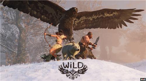 雷曼之父《超越善恶2》总监离职 投身野生动物保护 育碧 雷曼 超越善恶2 电玩迷资讯  第4张